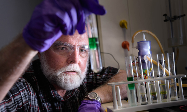 Prof. Cushman plays role in developing new battery