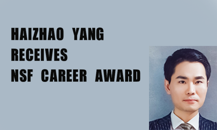 CAREER Award from the National Science Foundation